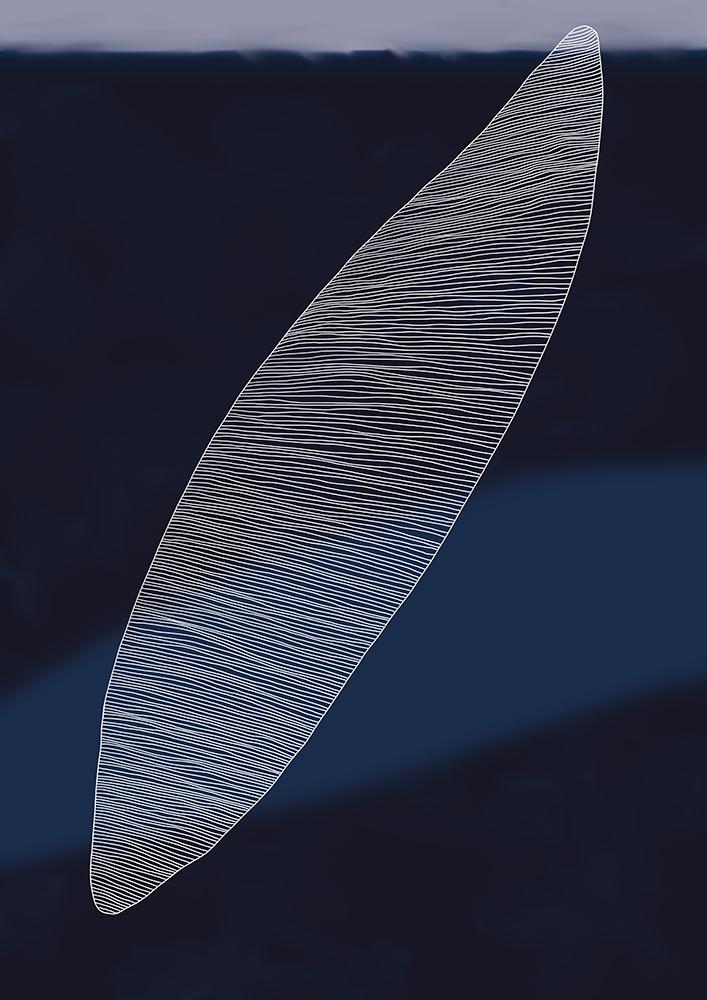 dunkelblau mit weiss rasiert